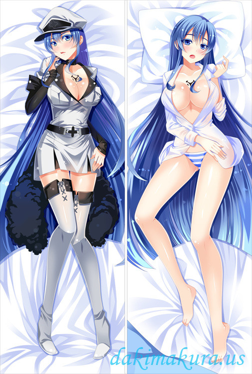 AKAME GA KILL - ESDESE ANIME DAKIMAKURA JAPANESE PILLOW COVER